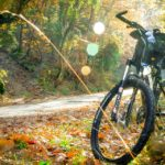 Top 10 Best Spring Break Bike Destinations