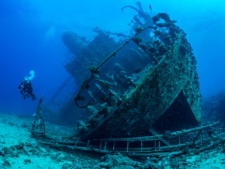 10 Best Underwater Adventures in the World You Have to Try