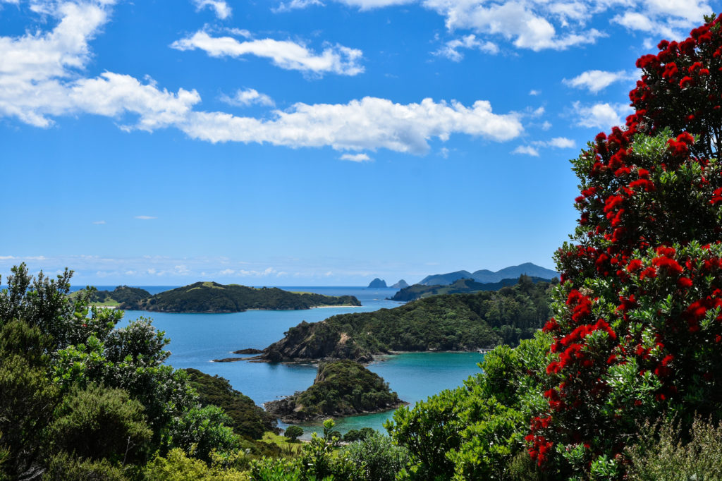 """Say """"I Do"""" in Style: 10 Beautiful New Zealand Wedding Locations"""