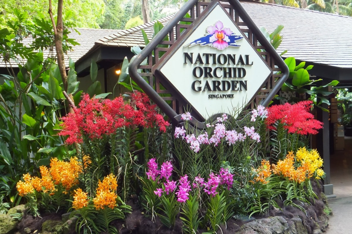national-orchid-garden-04.jpg