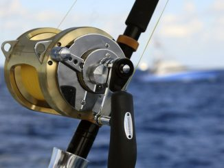 Beginner's Hand Guide to the 5 Major Types of Fishing Reels